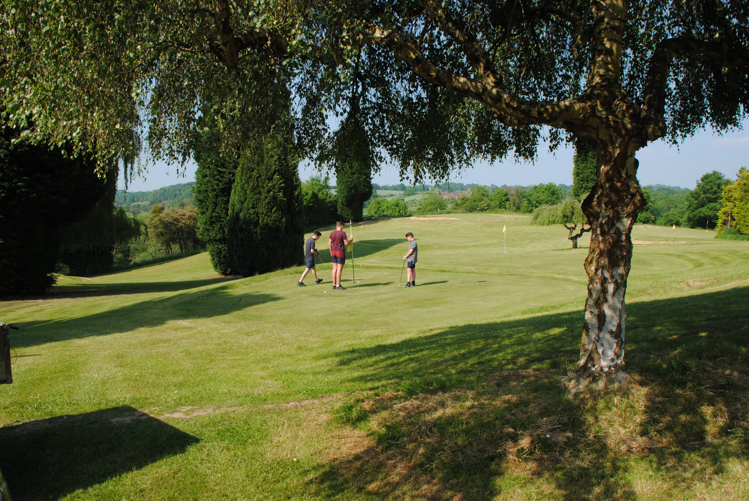 A view across Bank Farm Holiday Park, looking down through the trees, across one of the putting greens, down the fairway. It's a beautiful day, the trees are in full leaf, there are 3 boys on the putting green and the sky is crystal blue.