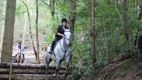 There's a grey horse, ridden by a girl on the cross country course at Bank Farm. This photo is in the forest, there's a wooden poled fence which the grey horse has just jumped, there's a second rider on a dun coloured horse behind the first about to jump the same fence.