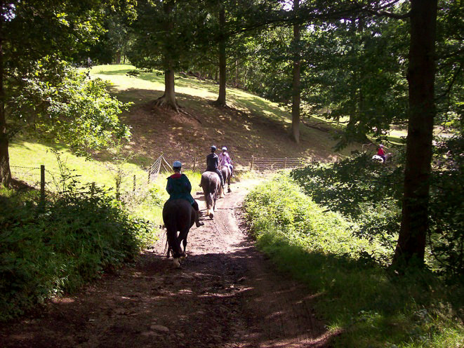 3 people riding horses down a shadowy, sleep path into the Wyre Forest. The light is poor as the trees surround and sunlight only peaks through the gaps in the leaves.